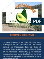 Plan de Marketing Palta