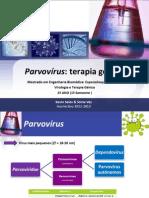Parvovírus