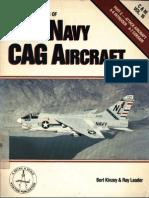 US Navy CAG Aircraft