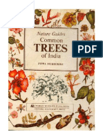 Natures Guide to Common trees of Inida