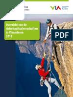 Risicokapitaal in Vlaanderen