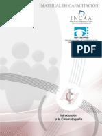 CEFOPRO-IntroduccionalaCinematografia_1_REALIZACION
