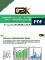 GBK International -Indonesia v1