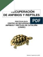 Anfibios y reptiles-Cuaderno docente-05.pdf