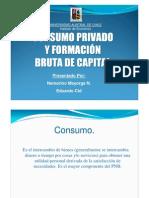 Consumo Privado y Formacion Bruta Del Capital Fijo