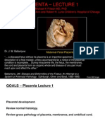 Fritsch Placenta part I 2012 compressed.pdf