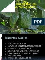 Manejo Nutrimental Del Cultivo Del Aguacate