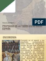Propiedad de la tierra en la Nueva España1