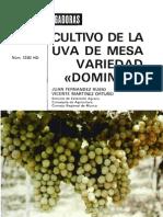 Cultivo de la Uva de Mesa Variedad Dominga