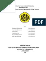 METODE KUADRATkel9-Udah Beres Bs d Print