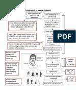 Pathogenesis of Measles PDF