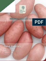Salad Potato 04