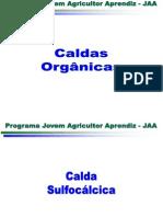 Agricultura Orgânica Caldas
