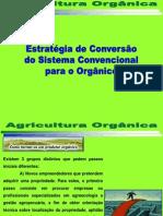 Agricultura Orgânica Conversão