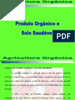 Agricultura e Solo Saudável