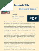 2013_01_Refexão do Mês EVEA_ Patrícia Almeida