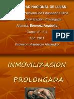 Inmovilizacion PDF