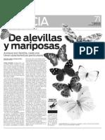 De Mariposas y Alevillas