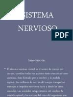 Presentacion Del SISTEMA NERVIOSO