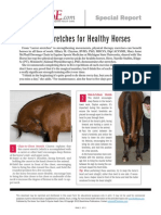 Top 5 Stretches for Healthy Horses 30240