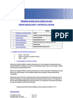 Informe diario ONEMI MAGALLANES 02.01.2013