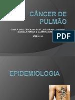 CA de Pulmao Slides