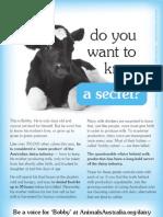 Disturbing Dairy Industry Secrets