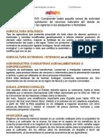 VOCABULARIO Sector Primario