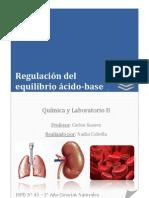 Regulación del equilibrio ácido-base