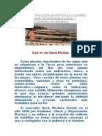 Ponencia de Raul Azpilikueta en La II Cumbre Del Agua de Mar
