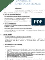 Capitulo III - Relaciones Industriales