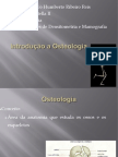 Aula de Osteologia