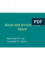 acute and chronic renal failure - laure  robert