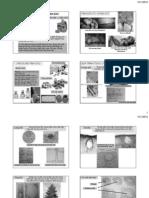 PDF - So Luoc Tinh Dau