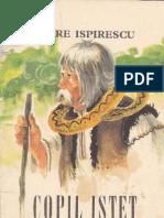 101540035 Petre Ispirescu 3 Copil Istet Ilustratii Coca Cretoiu Seinescu