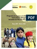 Programa de Apoyo a la Educación Intercultural Bilingüe escuelas de Alto Bío Bío- Chile 2007