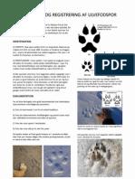 Guide til ulvefodspor