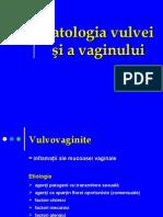 Patologia Vulvei Si Vaginului