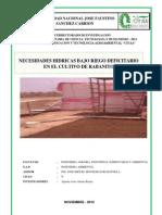 NECESIDADES HIDRICAS BAJO RIEGO DEFICITARIO EN EL CULTIVO DE RABANITO