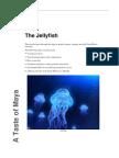 Maya the Jellyfish