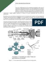 Tema5.Materialesceramicos.conformado.moldeo.inyeccion