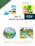 5. the Ecosystem