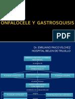 Onfalocele y Gastrosquisis