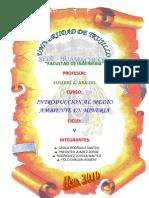 ECOLOGIA   TROFICA (2)
