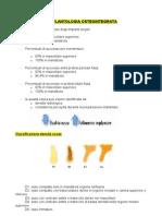 l'Implantologia Osteointegrata (Oliveri Formato Word)