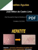 Hepatites Virais Agudas 22.2.2011 Para Alunos