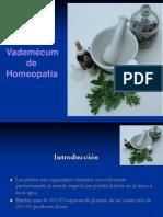 Sistematizacion Vademecum Homeopatico[1]