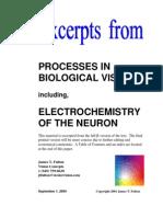 Organic Photochemistry 2004 - Fulton