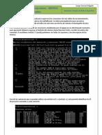 5 c Seguridad en Redes Corporativas Netstat Analisis Online