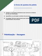 Pelotizacao - JAC VIII